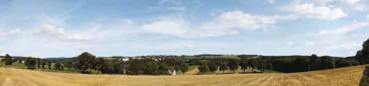 Hintergrund Erzgebirge 1 3-teilig (Gesamtlänge 279 x 65 cm)