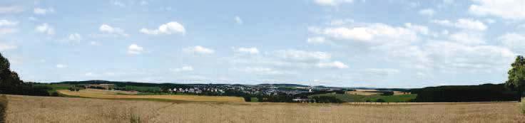 Hintergrund Erzgebirge 2 3-teilig (Gesamtlänge 279 x 65 cm)